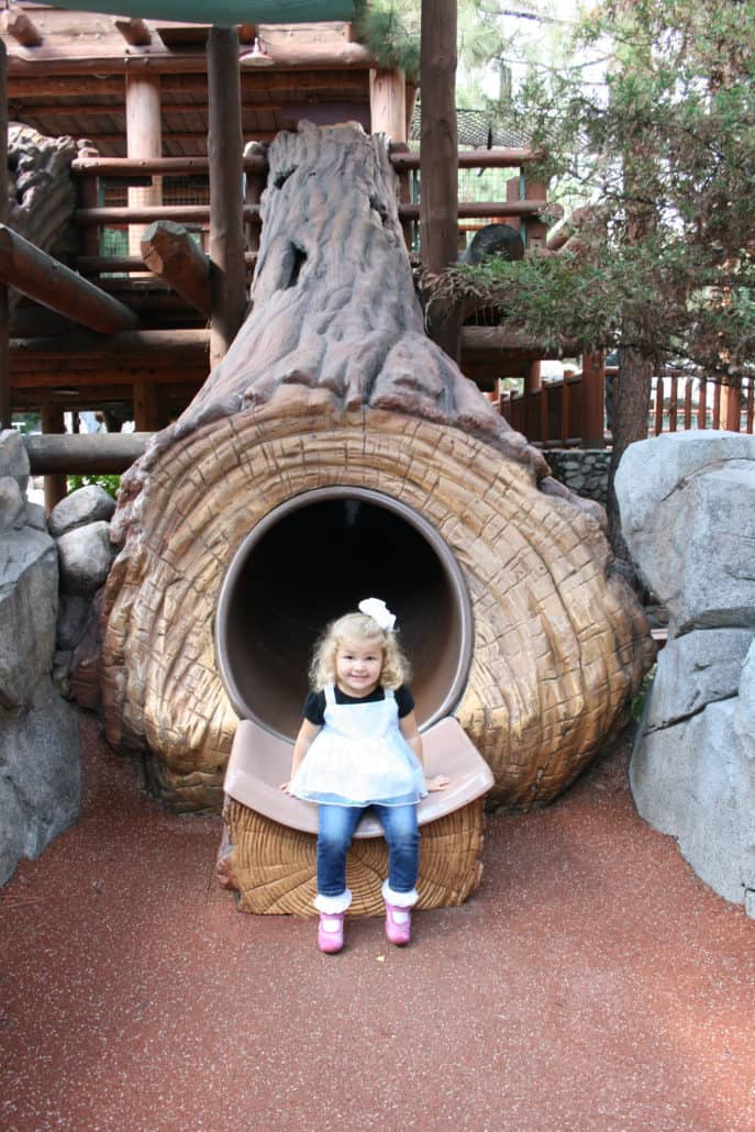 Log slide in Disney California Adventure park Redwood Creek Challenge Trail