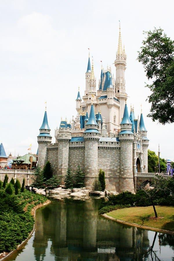 Savings Goal: Take a trip to Walt Disney World
