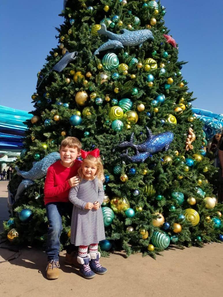 SeaWorld San Diego Christmas Celebration Ocean tree