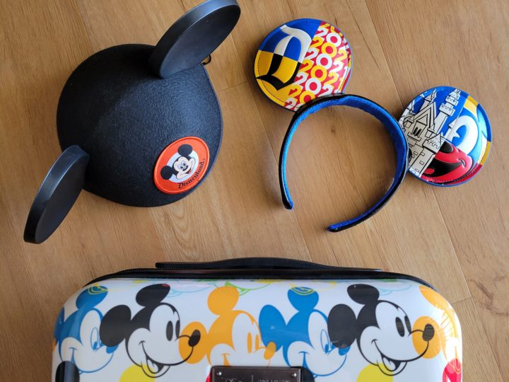 Pregnant at Disney Packing List Printable