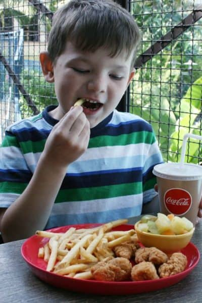 7 Top Tips to Save Money on Food at Disney Parks