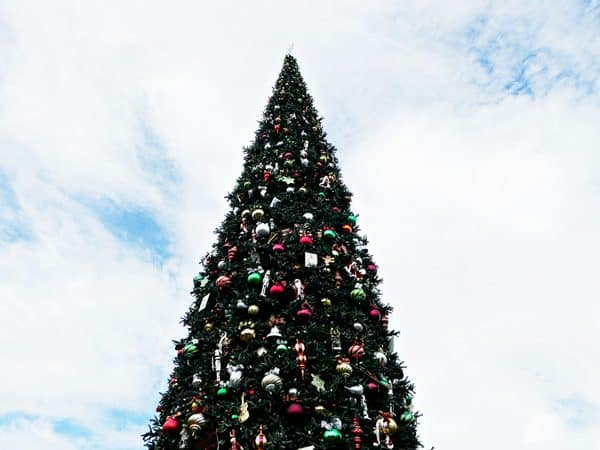 Dozens of ideas for taking special holiday photos at Disneyland Resort