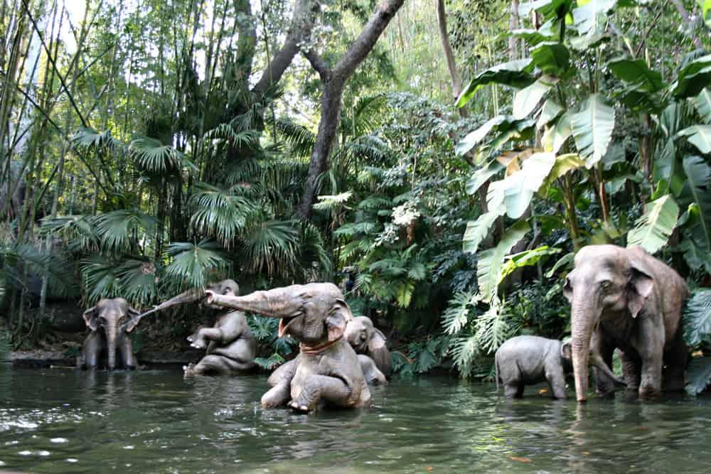Jungle Cruise at Disneyland