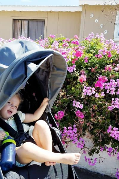 6 Useful Tips for Walking Outside With Your Baby