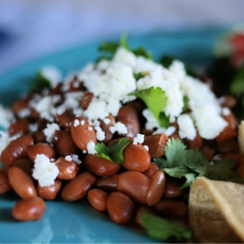 Pinto beans topped with cheese and cilantro