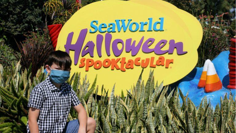 San Diego Halloween Events 2020 2020 SeaWorld Halloween Spooktacular San Diego